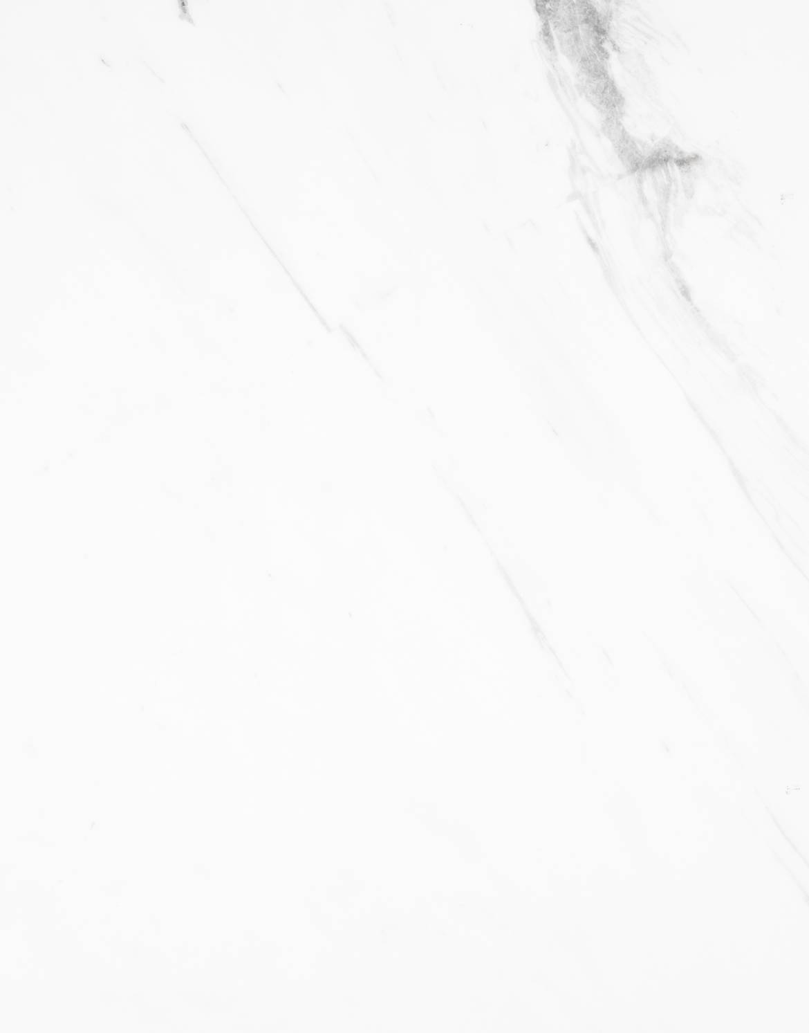 0020_MS.902-CRYSTAL-WHITE-MARBLE-POLISHED.jpg